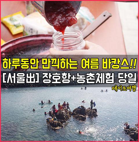 [서울出]장호항 바캉스+농촌체험 당일 데이트 여행*