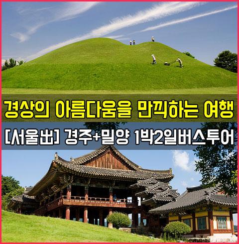 [서울出] 경주+밀양 1박2일 버스투어*
