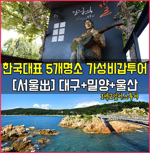 [서울出] 대구+밀양+울산 1박2일 버스투어*