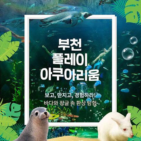 [부천] 플레이아쿠아리움